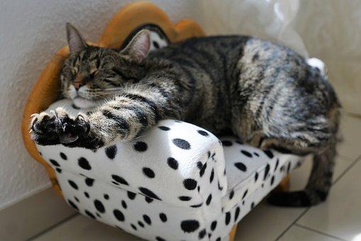Riposare e dormire